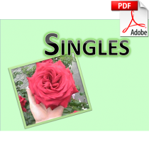 product_Singles